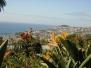 Madeira im März 2006
